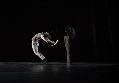"10 Hairy Legs' Tyner Dumortier in Julie Bour's ""The Blind Men and the Elephant"".  Photo: Steven Trumon Gray"