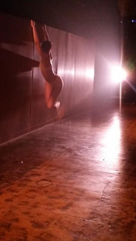 CEDAR LAKE – INSTALLATION 2015 | Cedar Lake Contemporary Ballet. Photo: Darrell Wood
